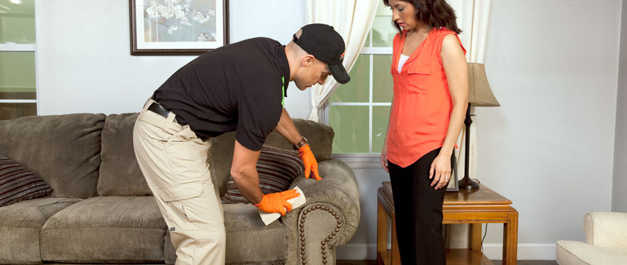 Independence, MO carpet upholstery cleaning