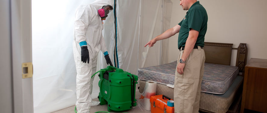 Independence, MO mold removal process
